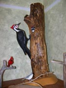 Available for purchase - Piliated woodpecker pair in tree house. Rare item in that both birds are carved entirely by use of pocket knife. circa 2005. $1200